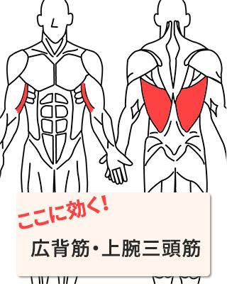 効く部位:広背筋・上腕三頭筋