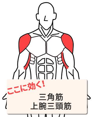 効く部位:三角筋・上腕三頭筋
