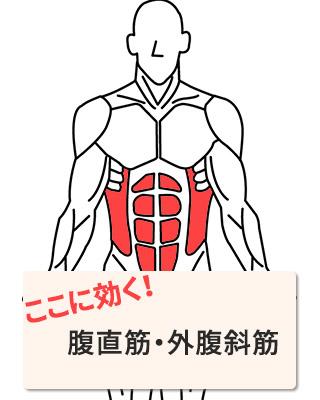 効く部位:腹直筋・外腹斜筋